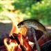 Вилка для барбекю Light My Fire Grandpa's FireFork Pin-Pack Black (LMF 30202010)
